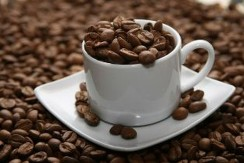 sized_Coffee Beans Web